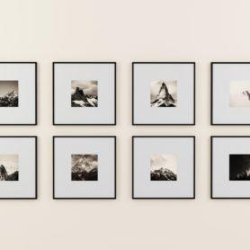 Bilder Galerien