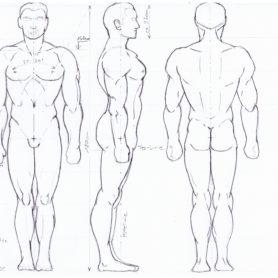 Athletischer Mann 3 Ansichten